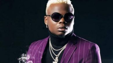 Photo of Harmonize – Nishapona