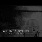 King Kaka – Wajinga Nyinyi