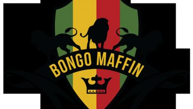 Photo of Bongo Maffin – Vuma