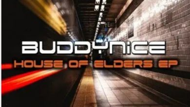 Photo of Buddynice – House Of Elders EP
