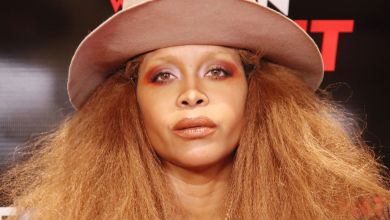 Photo of Erykah Badu's Incense Inspired By Her Girl Pieces Sold Out In 19 Minutes