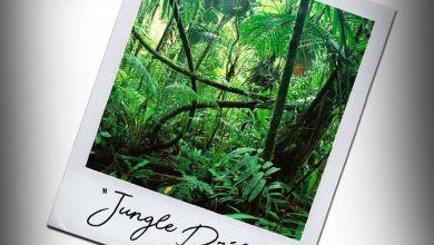 Photo of DJ Zan D – Jungle Drill ft. Reason