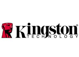 Photo of Kingston Releases 256 GB Netbook Flash Drive
