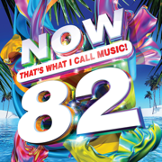 Now That's What I Call Music (Vol. 82) - Various Artists