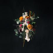 Graves into Gardens (feat. Brandon Lake) [Live] - Elevation Worship