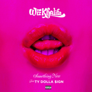 Something New (feat. Ty Dolla $ign) - Wiz Khalifa
