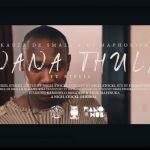 Throwback: Kabza De Small x DJ Maphorisa ft. Njelic – Nana Thula