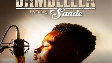 Photo of Ntsika Enlists Sande For Bambelela