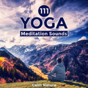 111 Yoga Meditation Sounds - Calm Nature, Healing Instrumental Songs, New Age Relaxation, Zen Music - Various Artists