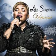 Moya Wami (Live) - Lebo Sekgobela