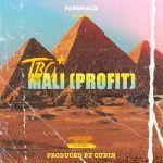 TBO  – Mali (Profit)