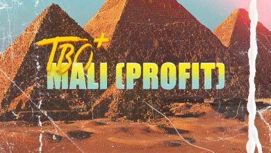 Photo of TBO  – Mali (Profit)