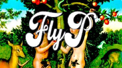 Fly P » This That You »