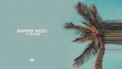 Photo of SiR – Rapper Weed Ft. Boogie