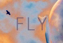 KONGOS  - Fly
