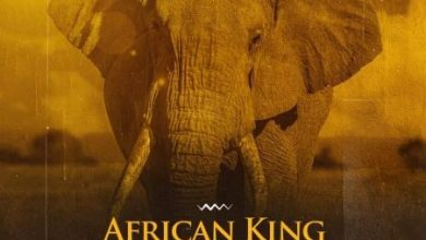 Photo of 2Point1 – African Kings ft. Stormrise