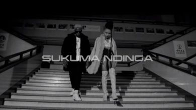 Photo of Rosa Ree – Sukuma Ndinga (Remix) ft. Rayvanny