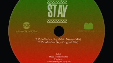ZuluMafia » Stay »