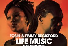 Photo of Toshi & Timmy Regisford – Life Music – Mixed by Timmy Regisford – (The Remixes)