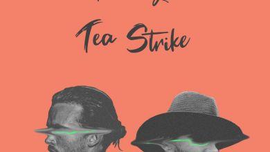 The Mackay.Z » Tea Strike »