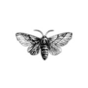 Infinitely Repeated - Hello Moth