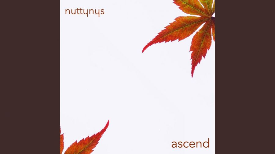 Nutty Nys – Ascend Image