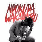 Charlie Kay – Ndokuda Wakadaro (feat. Nox)