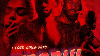 Photo of Sarz & Wurld – I Like Girls With Trobul (Album)