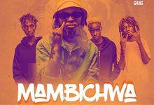 Magix Enga Ft. Boondocks Gang – Mambichwa