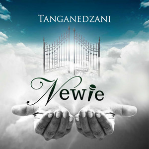 Newie – Tanganedzani (Receive) Live Image