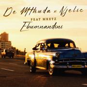 Ebumnandini (feat. Mkeyz) - De Mthuda & Njelic