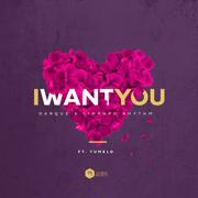 I Want You (feat. Tumelo) [Radio Edit] - Darque & Limpopo Rhythm