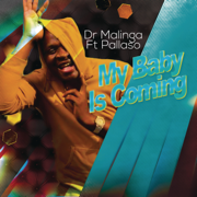 My Baby Is Coming (feat. Pallaso) - Dr Malinga