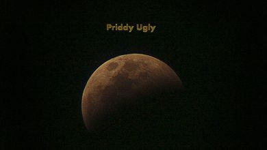 Priddy Ugly  – So I Dream Image