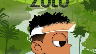 Photo of Nasty C And DJ Whoo – ZULU Mixtape (Track By Track) Review