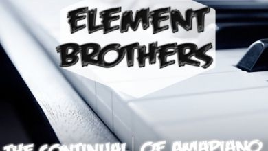 Element Brothers – The Continual of Amapiano, Vol. 4 Image