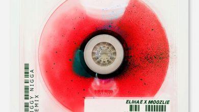 ELIHAE - Jiggy N***a (feat. Moozlie) - Single