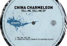 China Charmeleon  – Colours Image