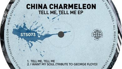 """Checkout China Charmeleon New Two Tracks EP """"Tell Me, Tell Me"""" Image"""