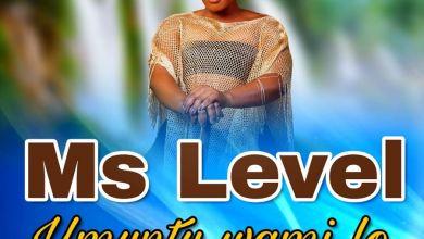 Ms Level - Umuntu Wami Lo - Single
