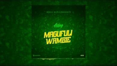 Aslay – Magufuli Wambie