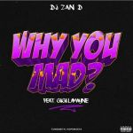 """DJ Zan-D Releases Music Video For """"Why You Mad"""" Ft. Gigi Lamayne"""
