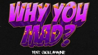 "Photo of DJ Zan-D Releases Music Video For ""Why You Mad"" Ft. Gigi Lamayne"