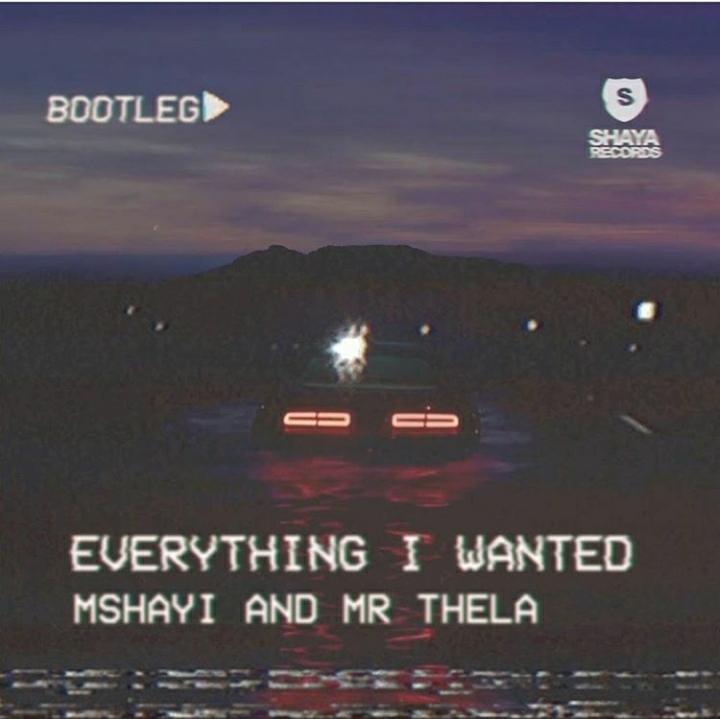 Mshayi & Mr Thela – Everything I Wanted (Bootleg Mix) Image