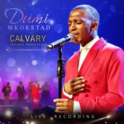 Calvary - Dumi Mkokstad