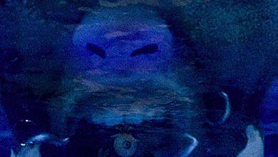 ZuluMecca - Holy Waters (Mama's Prayer) - Single