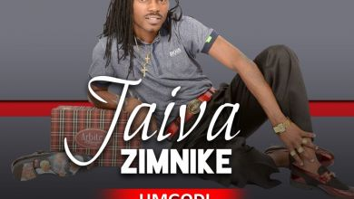 Jaiva Zimnike - Umgodi - Single