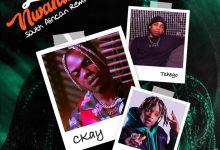 "CKay Premieres ""Love Nwantiti (South African Remix)"" Feat. Tshego & Gemini Major"