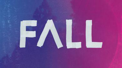 Francois van Coke & Matthew Mole - Fall - Single