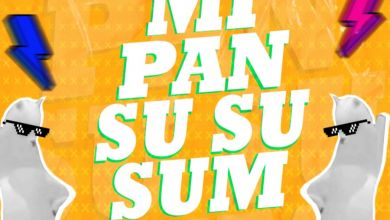 Dj Raulito - Mi Pan Su Su Summ - Single